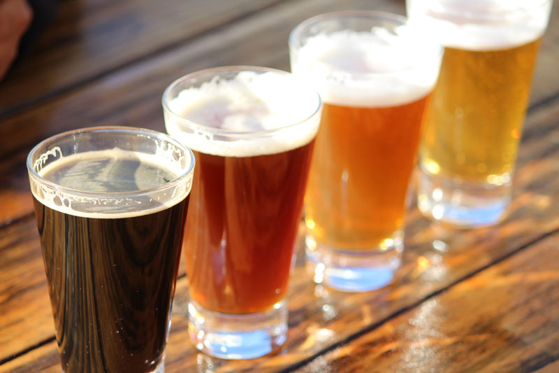 Learn Why You Need Insurance for Your Brewery